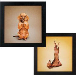 Lotus and Shoulder Stand Yoga Dogs Framed Canvas Prints