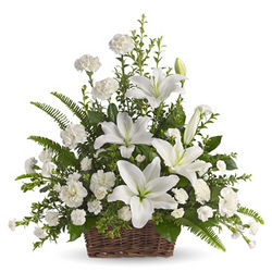 Peaceful White Lilies Sympathy Basket
