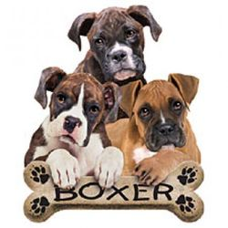 Boxer Puppies T-Shirt