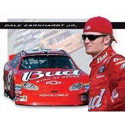 NASCAR Dale Jr. Bud Racing Wall Sign