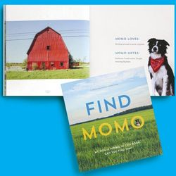 Find Momo Photography Book for Dog Lovers