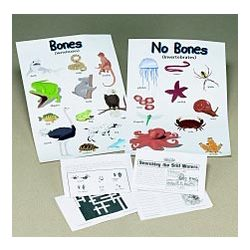 Bones and No Bones Posters and Funpack