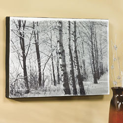 Winter Scene Wall Art