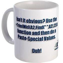 Isn't It Obvious? Excel Guru Mug