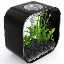 biOrb Life 30 Designer 8 Gallon Black Aquarium