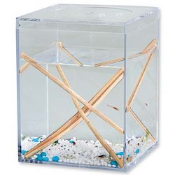 Shrimp, Algae, and Microorganisms Ecosystem Kit