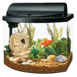 Goldfish Mini Bow 5 Gallon Aquarium Starter Kit
