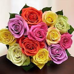 One Dozen Assorted Roses Bouquet