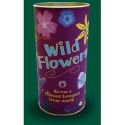 Wildflower Seed Kit