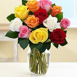 One Dozen Long Stemmed Rainbow Roses