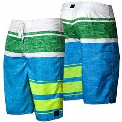 Multi Lennox Boardshorts