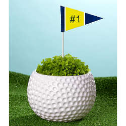 Fore Him Fern Planter