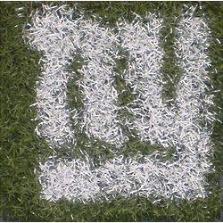 New York Giants Game Used Turf