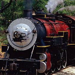 Texas State Railroad Engine Cab Ride