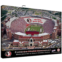 Personalized Canvas College Football Stadium Print