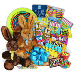 Kid's Bunnies, Treats and Toys Easter Gift Basket