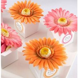 Gerber Daisy Favor Boxes