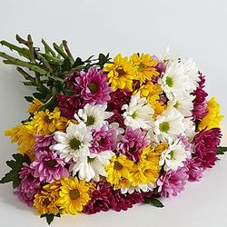 100 Blooms of Poms Bouquet