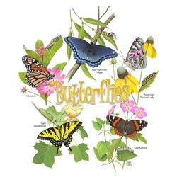 Children's Butterfly T-Shirt