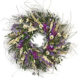 Wild Daisy Wreath