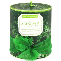 Evergreen Holiday Naturally Blended Candle