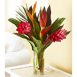 Tropical Blooms Bouquet