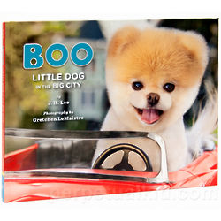 Boo - Little Dog in the Big City Book
