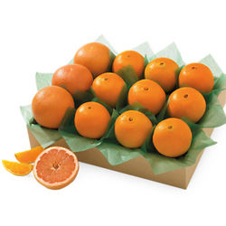 Key Biscayne Large Citrus Sampler Gift Box