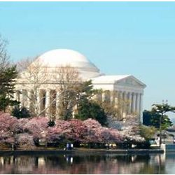 Washington D.C. Trolley Tour for Two Experience