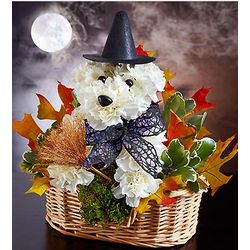 Witchy-Pooch Floral Basket