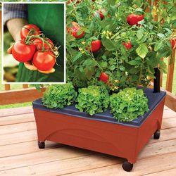 Patio Garden Kit
