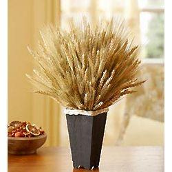Elegant Wheat Container