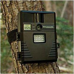5.0 Megapixel Infrared Digital Motion-Detection Camera