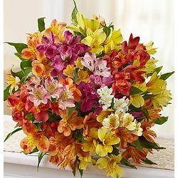 Peruvian Bouquet of Lilies