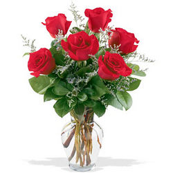 Fancy Half Dozen Roses with Vase
