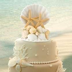 Starfish Cake Top