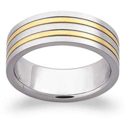 Men's Stainless Steel Dual Stripe Band
