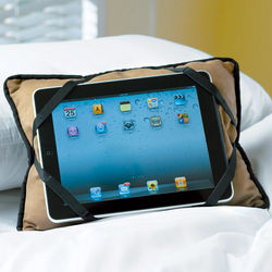 Tablet E-Reader Buddy