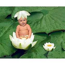 Your Photo in a Lily Pad Baby