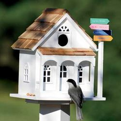 Sign Post Birdhouse & Pedestal Set