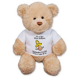 Personalized New Baby Pacifier Teddy Bear