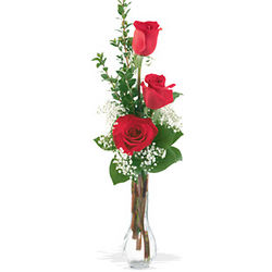 Sweet Thoughts 3 Roses Bud Vase