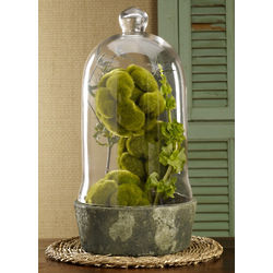 Aquitaine Glass Bell Jar