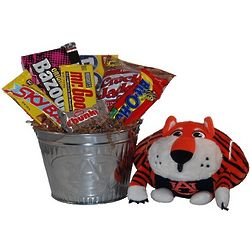 Auburn University Snack Bucket Gift Basket