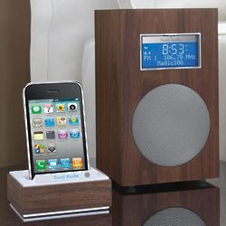 The Connector iPod/iPhone Dock for Audio Systems