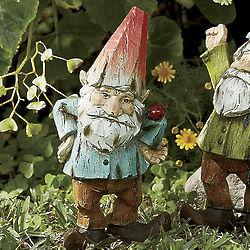 Nacklebell the Gnome with Ladybug