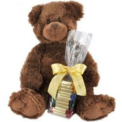 Plush Cocoa Bear with Chocolate Squares