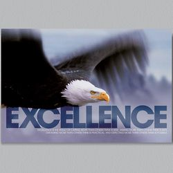 Excellence Eagle Wall Decor