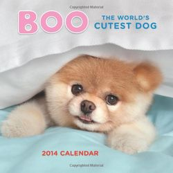 Boo the Dog 2014 Wall Calendar