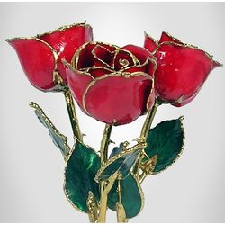 "Trio of Past, Present & Future Gold Trimmed 11"" Red Roses"